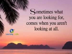 What You Are Looking For