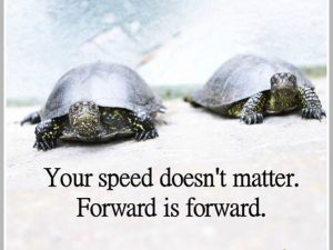 Speed Doesn't Matter