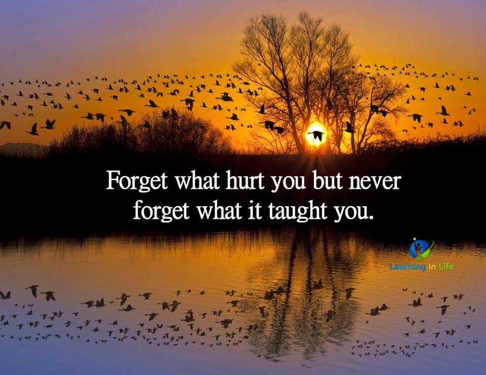 Photo of Forget What Hurt You