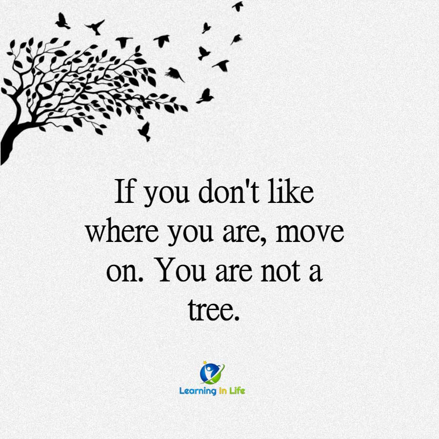 Photo of You Are Not A Tree