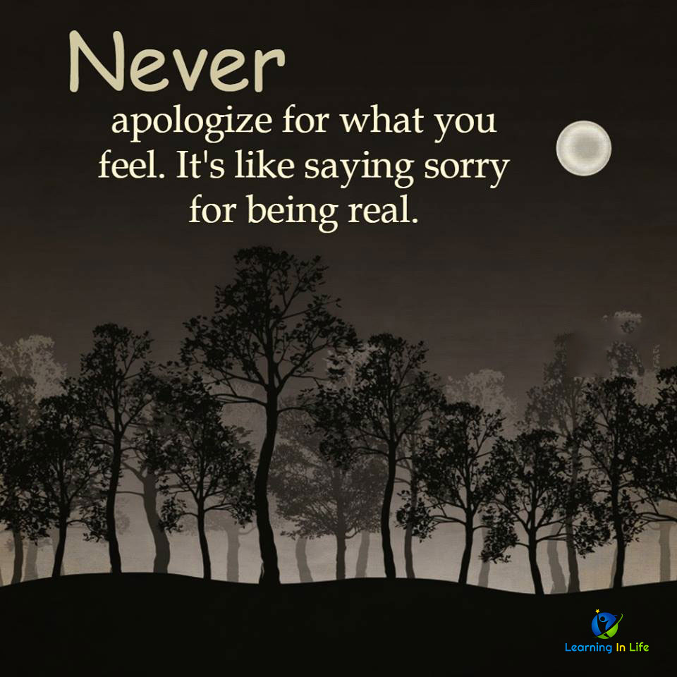 Photo of Never Apologize