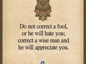 Do Not Correct A Fool