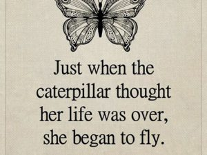 She Began To Fly