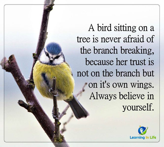 Photo of Always Believe In Yourself