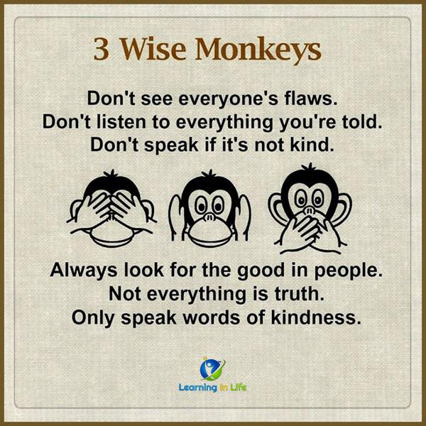 Photo of 3 Wise Monkeys
