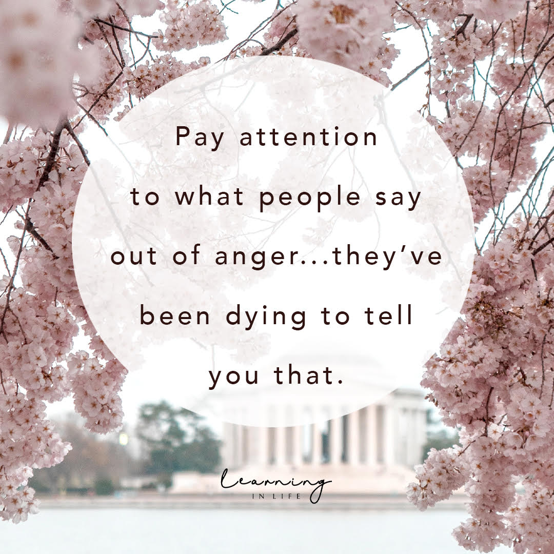 Photo of Pay Attention