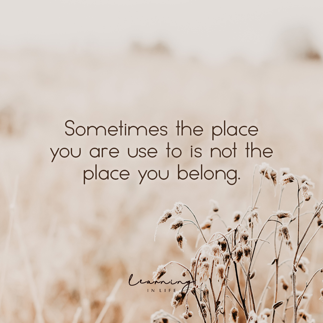 Photo of … not the place you belong.