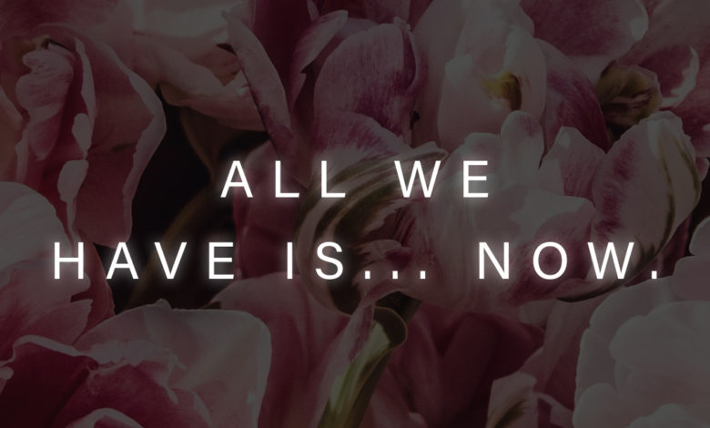 Photo of All we have…