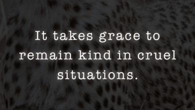 Photo of It takes grace…