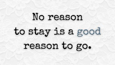 Photo of No reason to stay…
