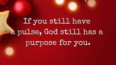 Photo of A Purpose