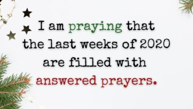 Photo of I am praying…